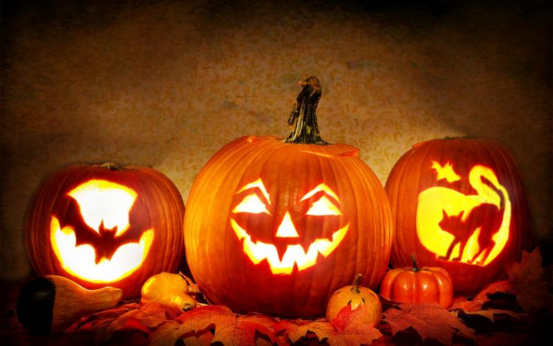 Halloween Horrors: Real-Life Scary Stories from the Data